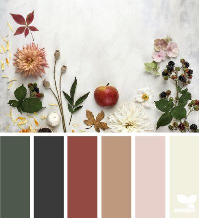 ¿Qué transmite el color de tu hogar?