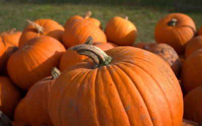 Los colores en halloween