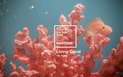 Living Coral: color del año 2019